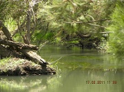 17th Feb 2011 - Tranquillity