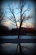 19th Feb 2011 - Reflecting