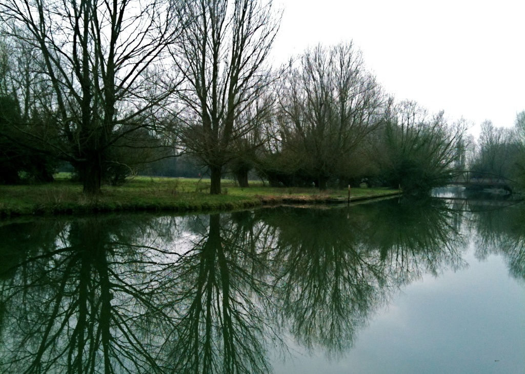 Grey Day Reflections by helenmoss
