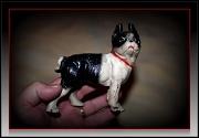 20th Feb 2011 - Cast Iron Pup