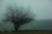20th Feb 2011 - rain on the car windscreen