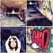 Urbex Monterey Style by pixelchix