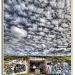 Urban Art? by pixelchix