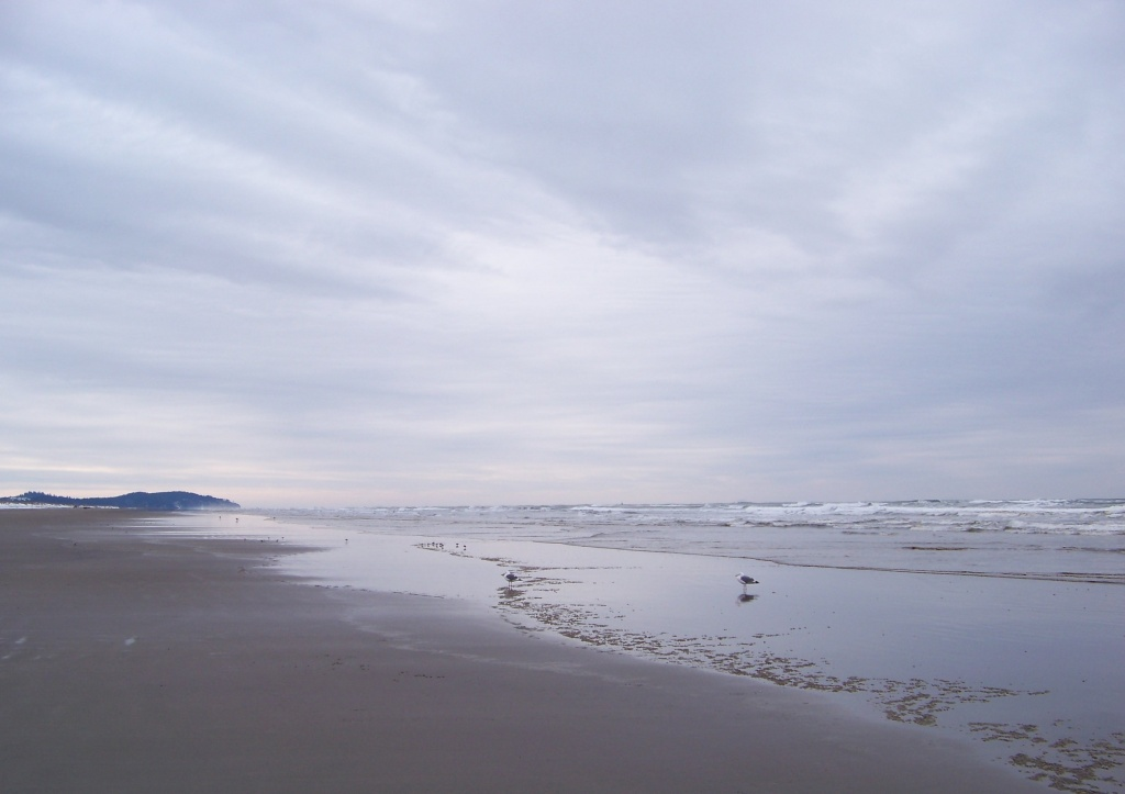 2-26-11 Gray Pacific Morning by shantwin