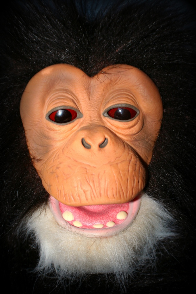 Monkey Business by digitalrn