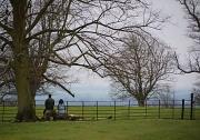 13th Mar 2011 - Enjoying the view