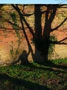 14th Mar 2011 - Shadow mural