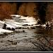 Snowy River by exposure4u