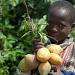 Juicy Fruit by miranda