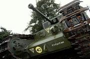 20th Mar 2010 - Tank
