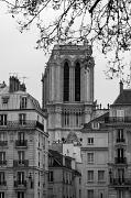 1st Apr 2011 - Notre Dame de Paris & ile de la Cité