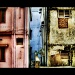 contrast  by harsha