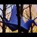 Crane by haagjes