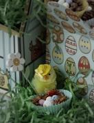 12th Apr 2011 - Nest update