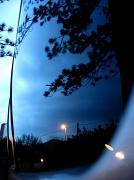 25th Mar 2010 - Day 84: 25-03-10
