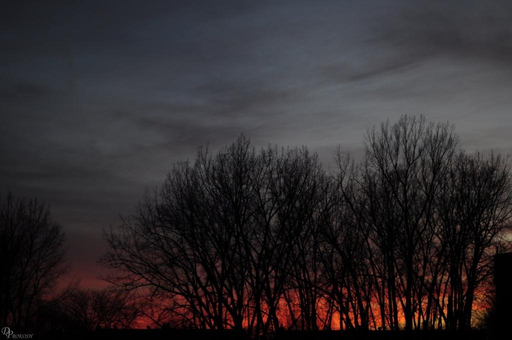 Sunset by dora