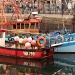 Fishing Boats by netkonnexion
