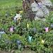 Garden Peeps by lisabell