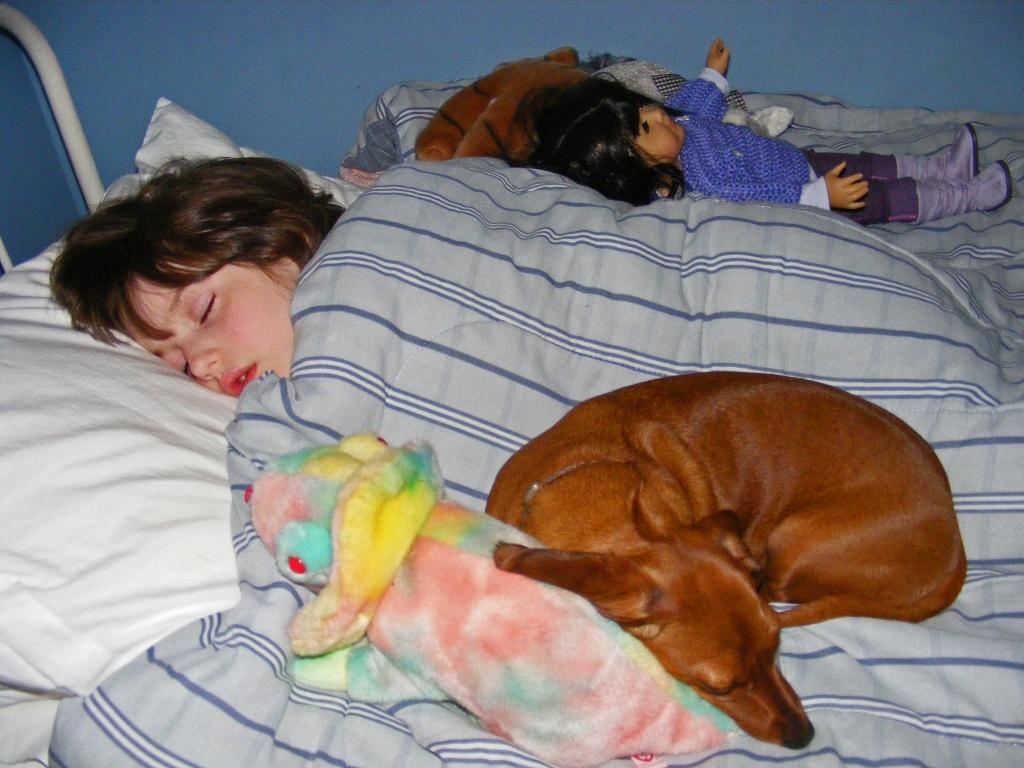 Sweet Dreams by lauriehiggins