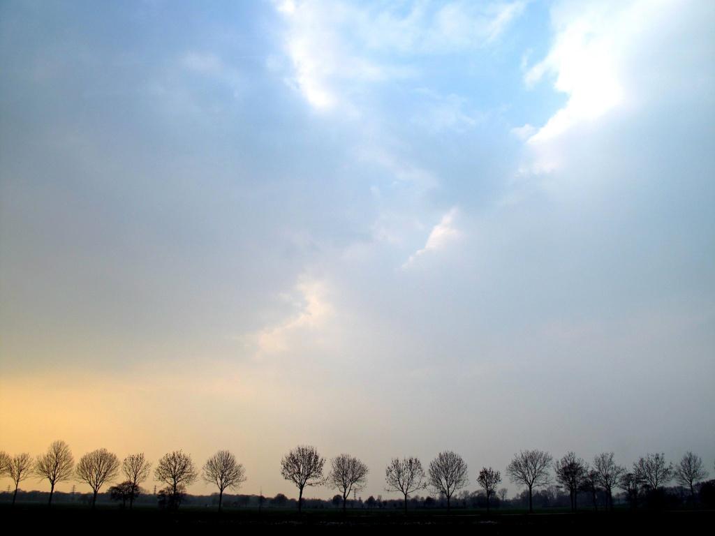 Sky (II) by halkia