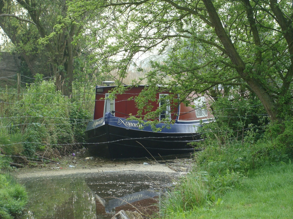 Backwater boat by busylady
