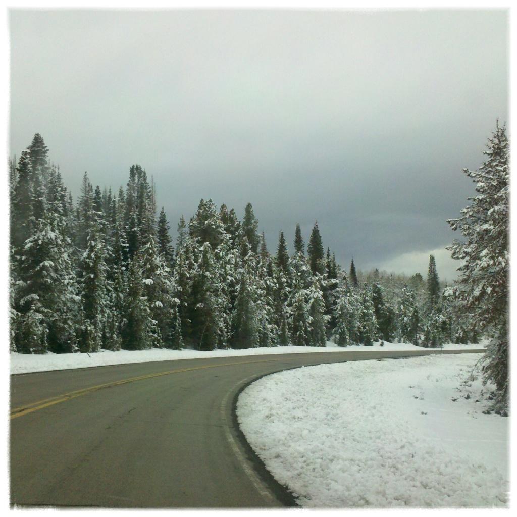 Winter Wonderla..wait a minute! by hmgphotos
