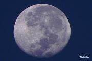 20th Apr 2011 - Full Moon