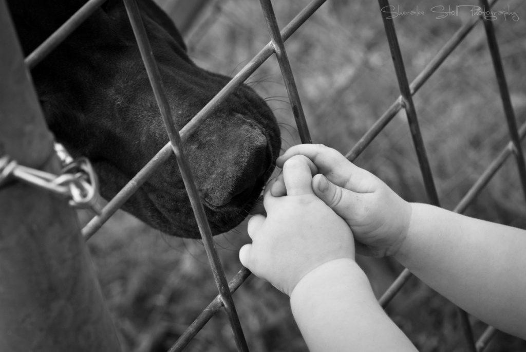 Gentle giant by bella_ss