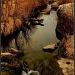 Cherry Creek by exposure4u