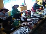 30th Apr 2011 - Fish Market on Phu Quoc Island