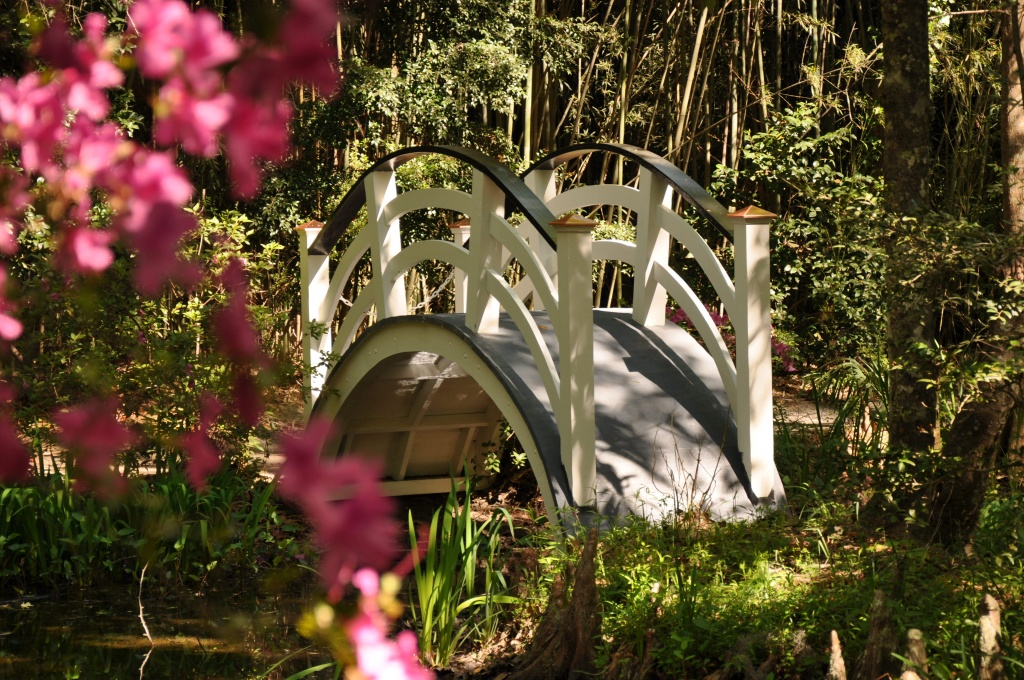 Magnolia Gardens by stownsend