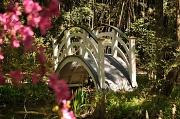 3rd May 2011 - Magnolia Gardens