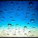 I Am Thankful For.....Rain!!! by dmrams