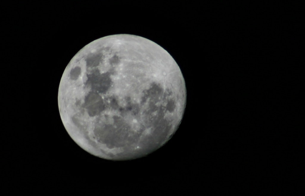 Almost-full moon by corymbia