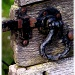 Layer Marney gate fittings by judithdeacon