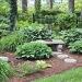 Hospitable Hosta Garden by lisabell
