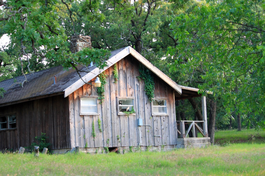 Deserted Campgrounds Cabin by grannysue