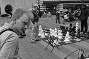 8th Jun 2011 - Checkmate!