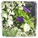 Hipstamatic Flowers by laurentye