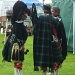 Pipers chat by sarah19
