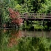 The Bridge To Somewhere by kerristephens