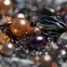 Glitter by hmgphotos