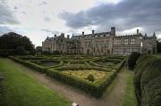 24th Jun 2011 - The maze of Newstead Abbey