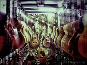 24th Jun 2011 - Guitar Heaven