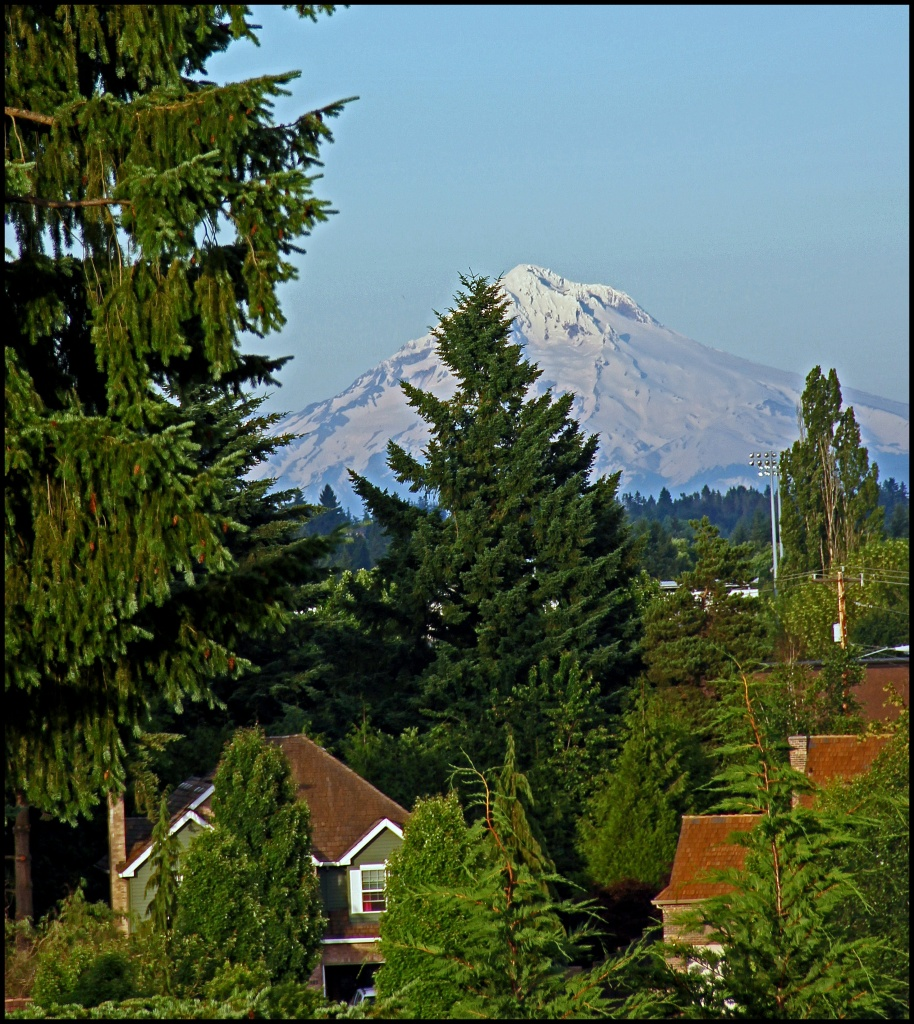 Mt Hood from Tualatin by hjbenson