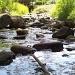 Creek by julie