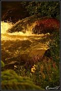 6th Jul 2011 - Flowing Waters