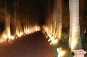 4th Jul 2011 - Lighted pathway