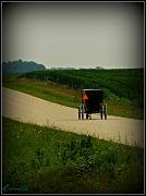 15th Jul 2011 - Amish Life