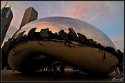 20th Jul 2011 - The Chicago Bean